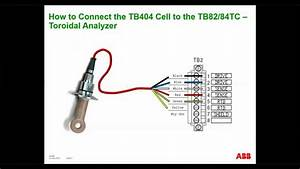 How To Wire The Tb404 Toroidal Conductivity Sensors To The