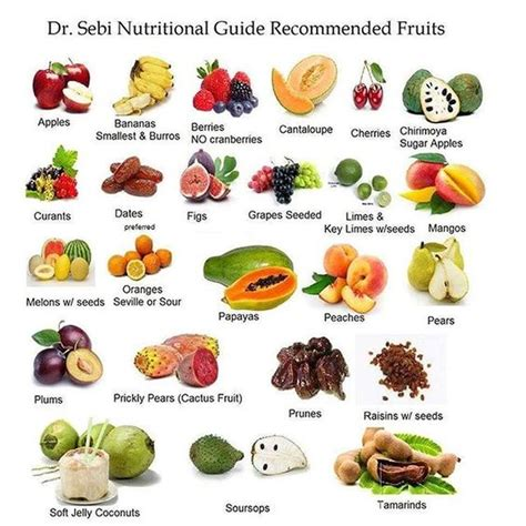 dr sebi nutritional guide the original mucusless diet