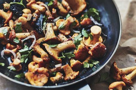 cuisiner des chanterelles mes recettes de plats végétariens laurent mariotte