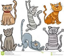 Funny Cute Cartoon Cats