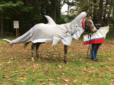 goode rider halloween costume contest vote