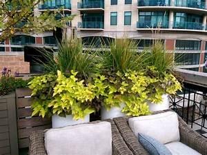 terrasse und balkon mit pflanzen und blumen gestalten With französischer balkon mit schöne gräser für den garten