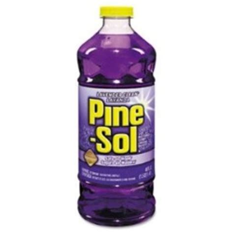 Pine Sol Lavender Scent Review   Smells Like A Field Of