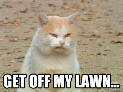 Get Off My Lawn Meme - get off my lawn disgusted cat quickmeme