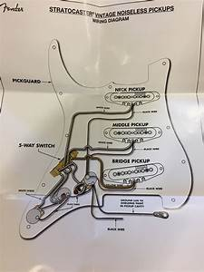 Vintage Noiseless Pickups Wiring Diagram Discrepancy