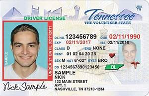 new resolution asks state to offer driver license test in With tennessee drivers license template