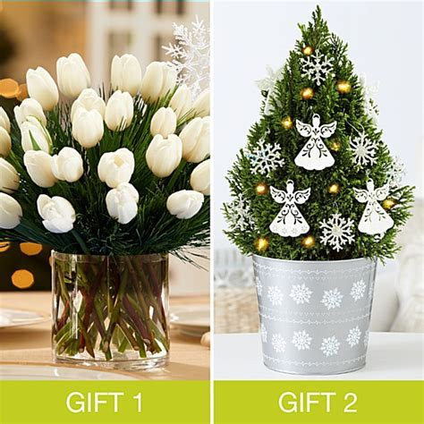 proflowers christmas tree flowers plants and gifts from proflowers