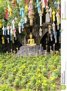 Buddha Statue Im Garten : meditation buddha statue im garten stockfoto bild 17735862 ~ Bigdaddyawards.com Haus und Dekorationen