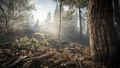 Wild Call Thehunter Hunter Ground Fondo 4k