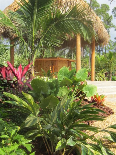 Tiki Huts West Palm by Tropical Landscape Tiki Hut Backyard Makeover West
