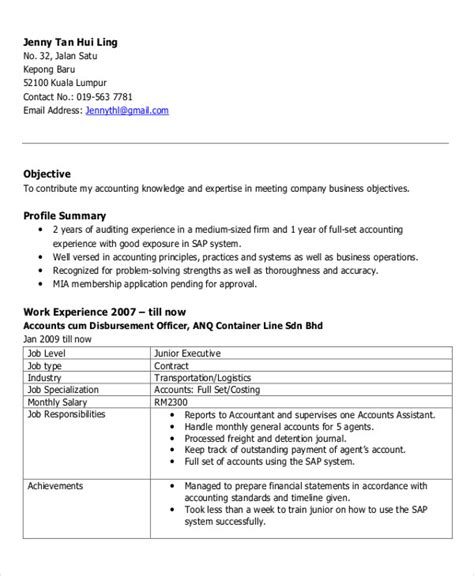 What Is Executive Profile On Resume by 61 Executive Resume Templates Free Premium Templates
