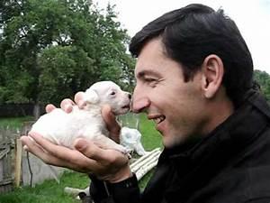 Kleiner Weißer Couchtisch : kleiner weisser hund und gro e nase serbien 2011 youtube ~ Markanthonyermac.com Haus und Dekorationen