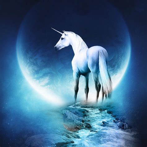 cgfantasy unicorns   bible ipad iphone hd