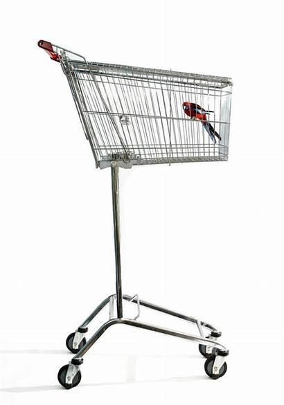 Shopping Cart Cage Carts Repurposed Trolley Errazuriz