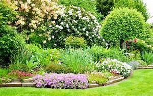 Begleitpflanzen Für Rosen : b ume unterpflanzen kleine begleiter f r die riesen in ihrem garten ~ Orissabook.com Haus und Dekorationen