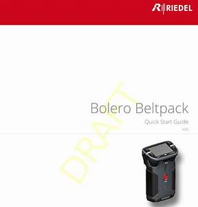 Riedel Communications And Co Kg Bpk100619 Wireless