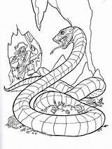 Coloring Pirates Pages Caribbean Pirate Rattlesnake Treasure Diamondback Printable Western Printables Colouring Snake Games Cartoon Popular Getcolorings Coloringhome Colorings sketch template
