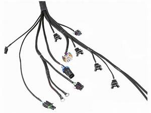 5 3l Vortec Wiring Harness With Labels