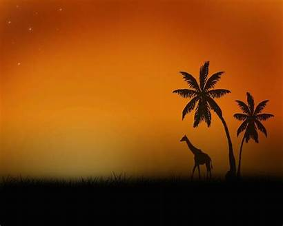 Safari Wallpapers Background Backgrounds 1024 Wallpapercave