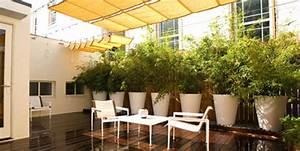 Cacher Vis A Vis Jardin : comment cacher vis a vis jardin meilleur une collection de ~ Dailycaller-alerts.com Idées de Décoration