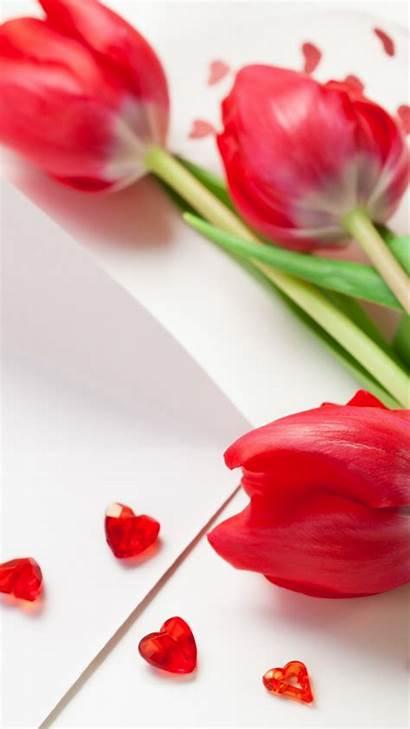 Heart Flower 4k Spring Tulip Wallpapers 5k