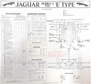 Jaguar Maintenance Xke E Type Chart V12 S3 1971