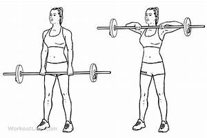 Upright Barbell Row | Illustrated Exercise guide - WorkoutLabs