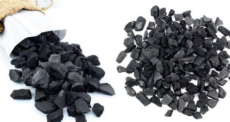 le charbon de bois de bambou un d 233 sodorisant naturel et efficace