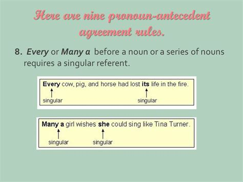 pronoun antecedent agreement englishstarter