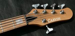 Carvin Pb5 Bass Guitar