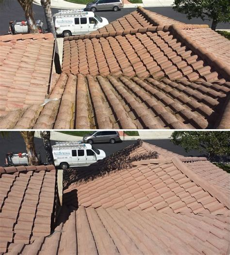 33 best images about roof cleaning on green