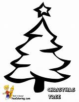 Coloring Christmas Pages Tree Printable Trees Sheets Themed Yescoloring Tracer Foliage Alphabet Wonderful Calendar sketch template