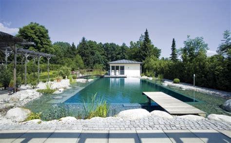 schwimmteich oder pool gartenteich schwimmteich oder gartengestaltung teichmeister lifestyle und design