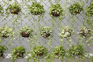 Creative Chain Link Fence Decorations — Fence Ideas