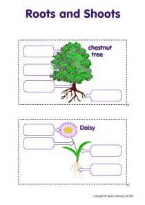 Plants Worksheets Elementary Science Worksheets Images
