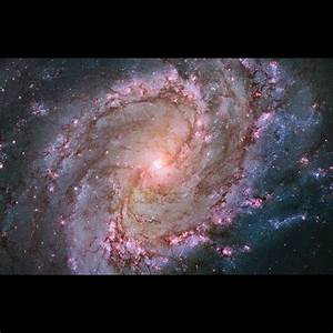 Buy research paper online the historic hubble ...