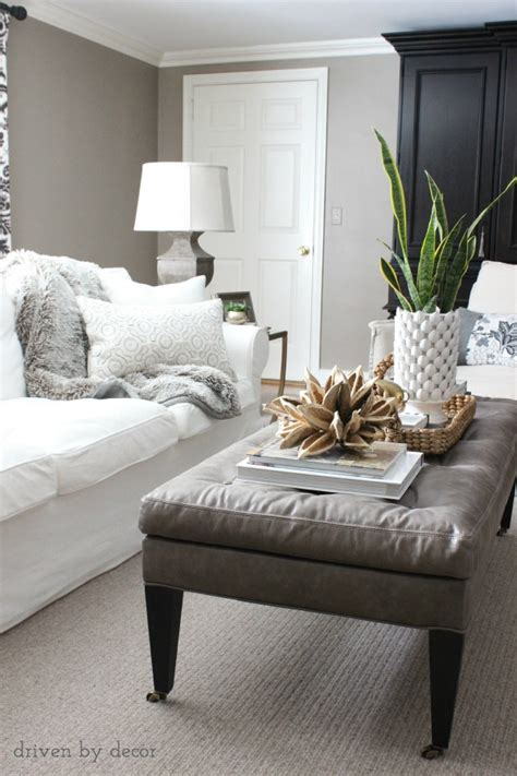 decorating  living room   tips driven  decor
