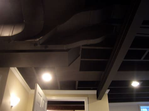 decorations painting the ceilings black flight of a