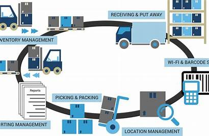 Warehouse Layout Management System Barcode Pack Wms