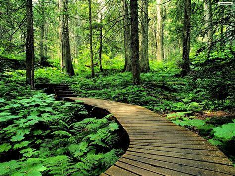 gambar keren gambar keindahan alam