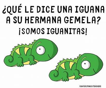 Jokes Spanish Elementary Funforspanishteachers Humor