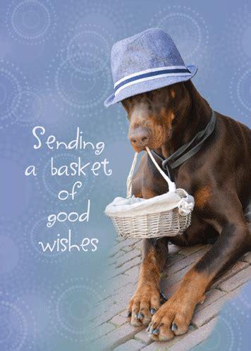 sending cheer dog  basket     ecards