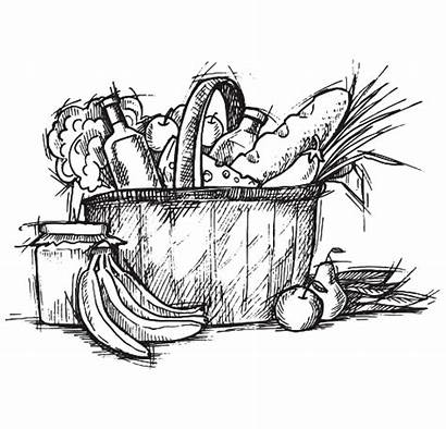 Basket Weekly Grocery Groceries Items Produce Fresh