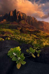 Monochromatic Color Landscape Photography