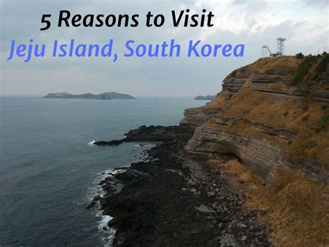 5 reasons to visit jeju island south korea huffpost