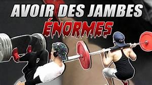 Musculation   Programme De Jambes Prise De Masse  Cuisses Et Mollets