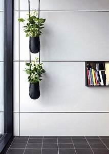 Porte Plante Interieur Design : un syst me de porte plante id al pour imaginer un mur v g tal ou un jardin suspendu colors ~ Teatrodelosmanantiales.com Idées de Décoration