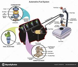 Automotive Fuel System Infographic Diagram Showing Parts Carburetor Injector Throttle  U2014 Stock