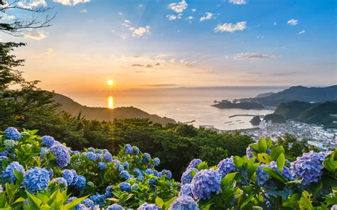Free Desktop Image by Beautiful Japanese Flora And Scenery Photos Free For You