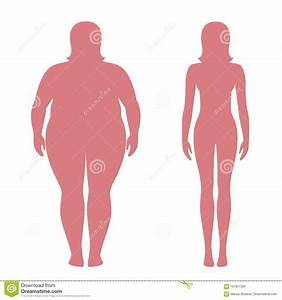 Vector Illustration Of Fat And Slim Woman Silhouettes
